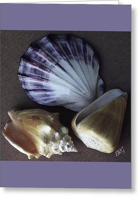 Seashells Spectacular No 30 Greeting Card by Ben and Raisa Gertsberg