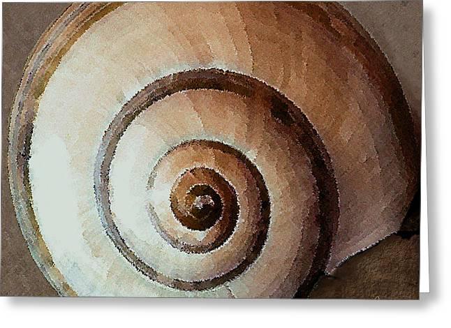 Sea Shell Digital Art Photographs Greeting Cards - Seashells Spectacular No 34 Greeting Card by Ben and Raisa Gertsberg