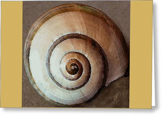 Seashells Spectacular No 34 Greeting Card by Ben and Raisa Gertsberg