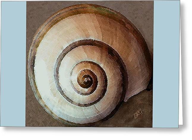 Round Shell Greeting Cards - Seashells Spectacular No 34 Greeting Card by Ben and Raisa Gertsberg