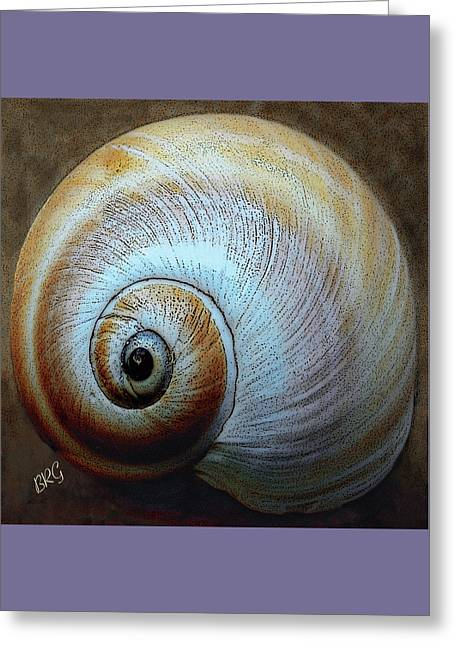 Seashells Spectacular No 36 Greeting Card by Ben and Raisa Gertsberg
