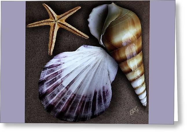 Gertsberg Greeting Cards - Seashells Spectacular No 37 Greeting Card by Ben and Raisa Gertsberg