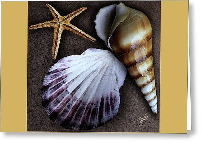 Ben Gertsberg Greeting Cards - Seashells Spectacular No 37 Greeting Card by Ben and Raisa Gertsberg