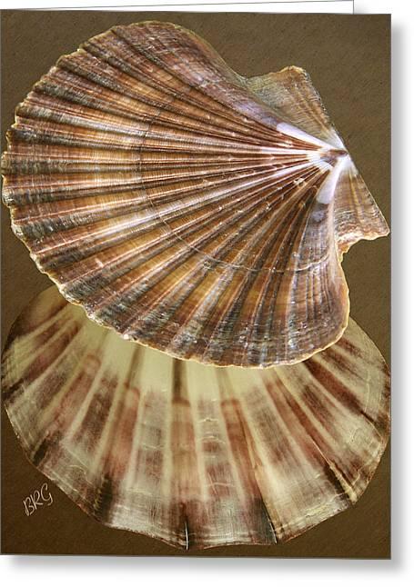 Sea Shell Digital Photographs Greeting Cards - Seashells Spectacular No 54 Greeting Card by Ben and Raisa Gertsberg