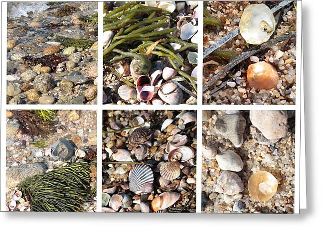 Seashore Collage Greeting Card by Carol Groenen