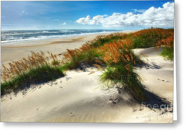 Pea Island Greeting Cards - Seaside Serenity I - Outer Banks Greeting Card by Dan Carmichael