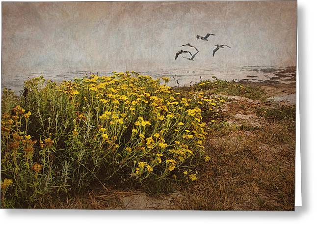 Seaside Digital Greeting Cards - Seaside Sun Greeting Card by Nikolyn McDonald