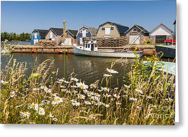 Fishing Village Greeting Cards - Seaside view of Prince Edward Island Greeting Card by Elena Elisseeva