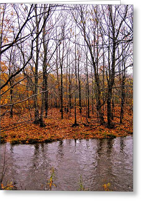 Reflections Of Trees In River Greeting Cards - Season End Greeting Card by Kathleen Sartoris