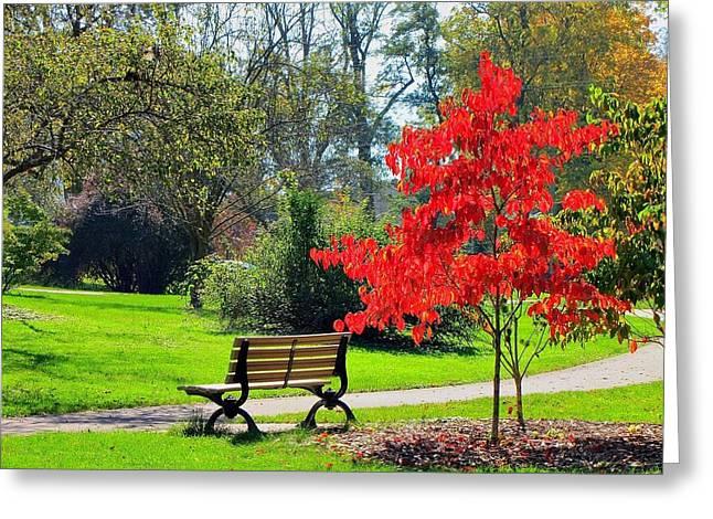 Season Of Colors 7813 Hdr Greeting Card by Maciej Froncisz