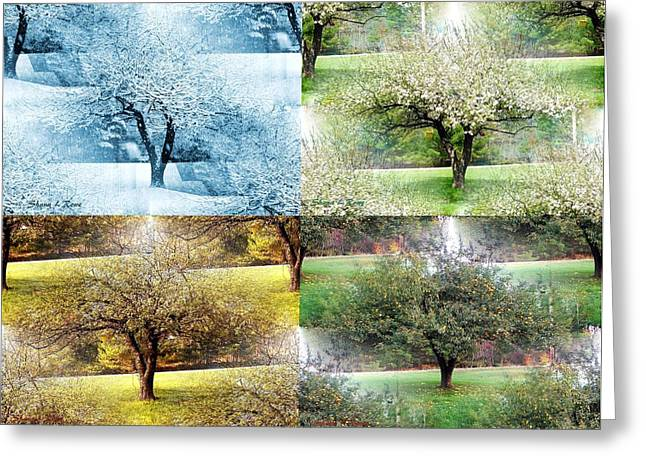 Rowe Digital Art Greeting Cards - Seasonal Orchard Collage Greeting Card by Shana Rowe