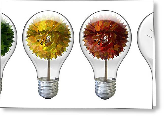 Natural Resources Greeting Cards - Seasoned Light Bulbs Greeting Card by Allan Swart