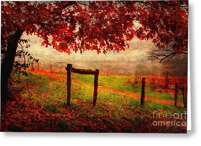 Fence Row Greeting Cards - Seasons Ending Greeting Card by Michael Eingle
