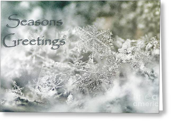 Christmastime Greeting Cards - Seasons Greetings Greeting Card by Darren Fisher