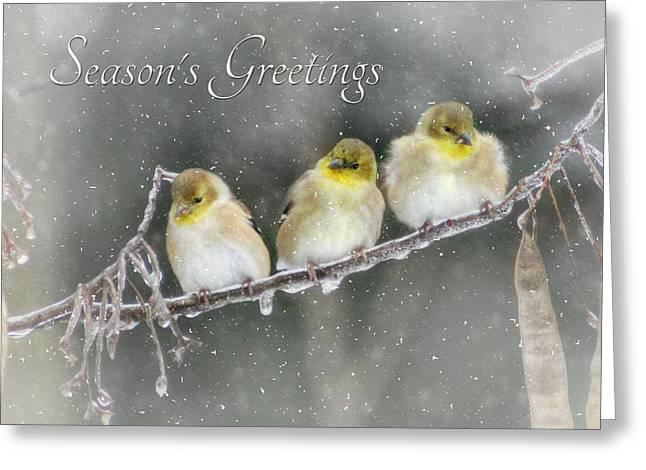 Season's Greetings Greeting Card by Lori Deiter