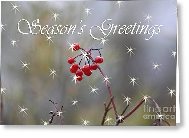 Christmas Greeting Greeting Cards - Seasons Greetings Red Berries Greeting Card by Cathy  Beharriell