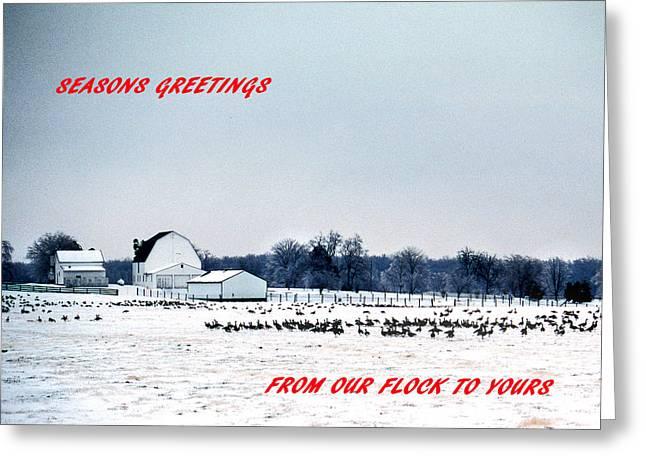 Rural Snow Scenes Greeting Cards - Seasons Greetings Greeting Card by Skip Willits