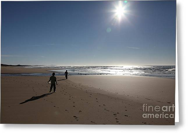 Seasons In The Sun  5D21323 Greeting Card by Wingsdomain Art and Photography