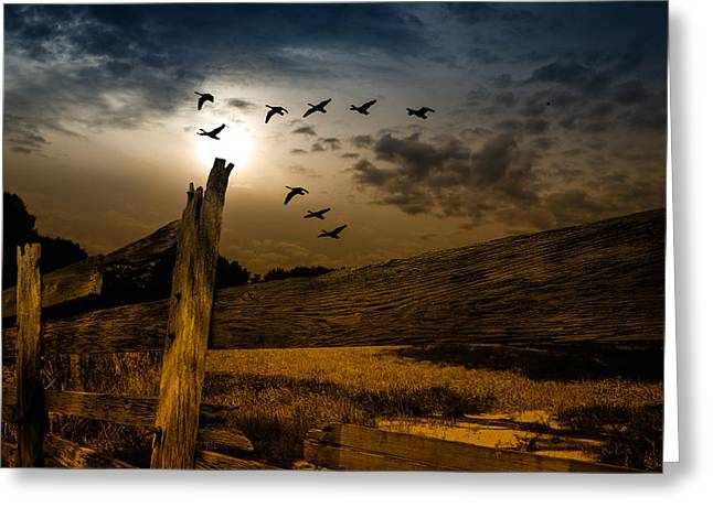 October Framed Greeting Cards - Seasons of Change Greeting Card by Bob Orsillo
