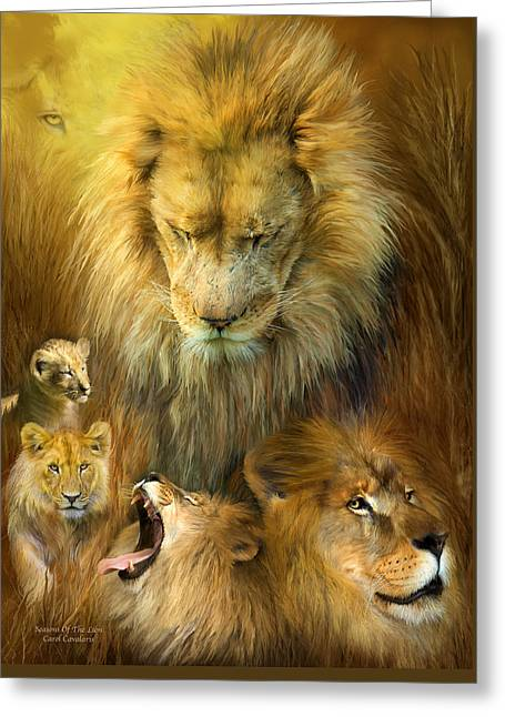 African Lion Art Greeting Cards - Seasons Of The Lion Greeting Card by Carol Cavalaris