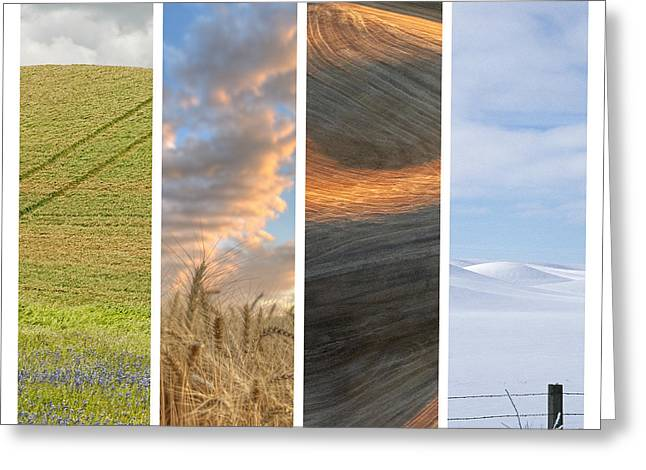 Contour Plowing Greeting Cards - Seasons of the Palouse II Greeting Card by Latah Trail Foundation