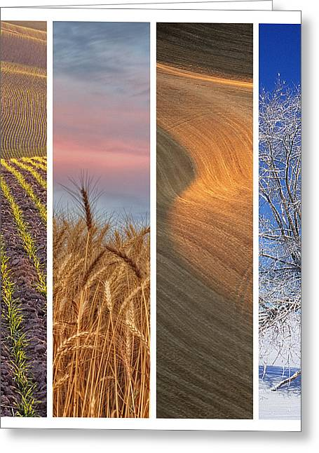 Color Green Greeting Cards - Seasons of the Palouse Greeting Card by Latah Trail Foundation