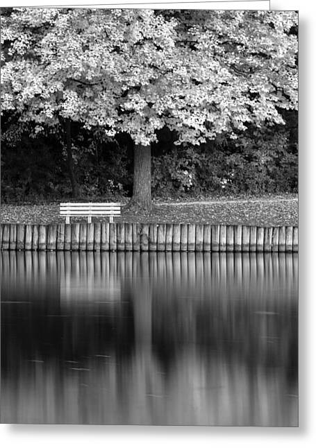 Wood Bench Greeting Cards - Seat in the Woods Greeting Card by Andrew Soundarajan
