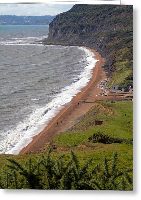 Geology Photographs Greeting Cards - Seatown beach and bay Dorset England  Greeting Card by Michael Charles