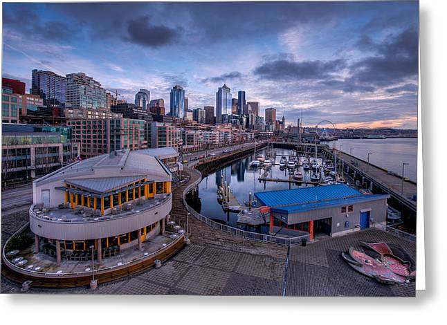 Seattle Bell Street Pier Greeting Card by Dan Mihai