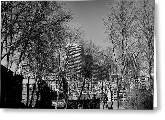 Pioneer Square Seattle Greeting Cards - Seattle from Pioneer Square Greeting Card by David Patterson