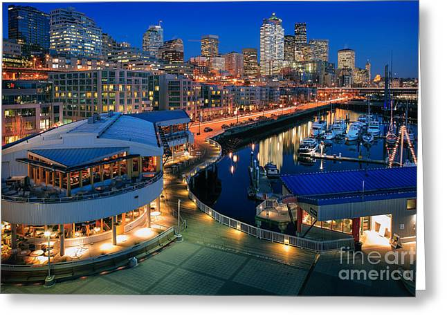 Marina Night Greeting Cards - Seattle Piers at Night Greeting Card by Inge Johnsson