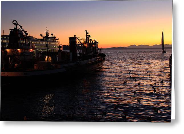 Seattle Photographs Greeting Cards - Seattle Sunset Greeting Card by John Daly
