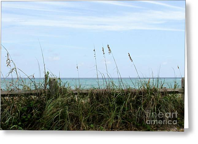 Oceanview Greeting Cards - Seaview Greeting Card by Sabrina L Ryan