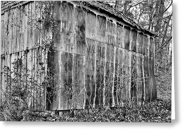 Tin Roof Greeting Cards - Secluded barn 2013 b/w Greeting Card by Greg Jackson