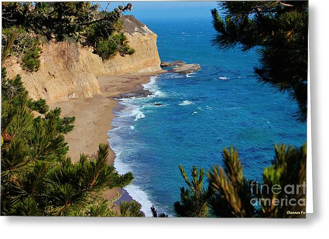 Surfing Photos Greeting Cards - Secluded Beach Greeting Card by Shannan Peters