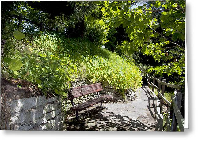 Park Benches Greeting Cards - In Search of Peace and Quite Greeting Card by Barbara Snyder