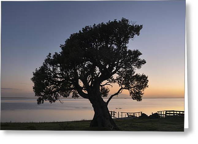 Chatham Greeting Cards - Secluded Greeting Card by Holger Spiering