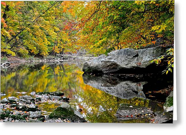 Mesmerizing Greeting Cards - Seclusion Greeting Card by Frozen in Time Fine Art Photography
