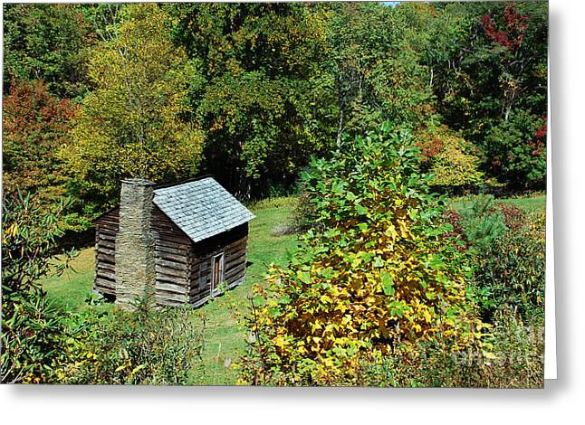 Mountain Cabin Greeting Cards - Seclusion Greeting Card by Skip Willits