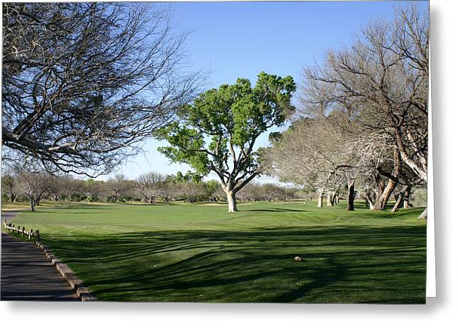1959 Movies Greeting Cards - Second Tee Tubac Golf and Resort 9 hole course Greeting Card by Jack Pumphrey