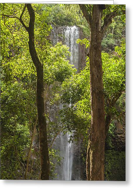 Recently Sold -  - Water Flowing Greeting Cards - Secret Falls 3 - Kauai Hawaii Greeting Card by Brian Harig