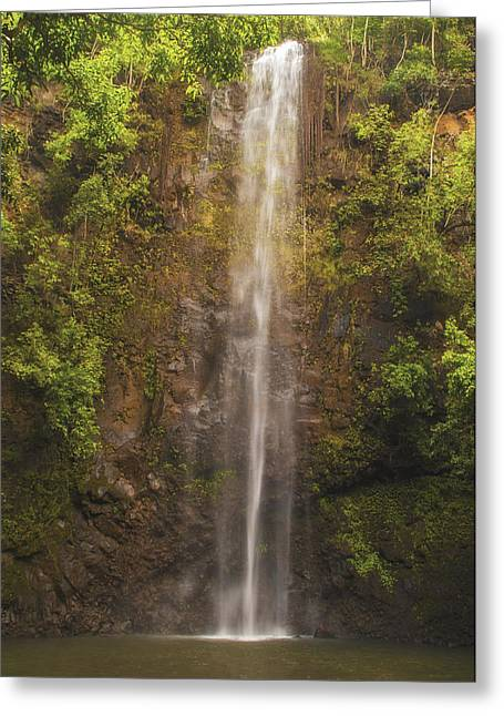 Tropical Island Greeting Cards - Secret Falls Greeting Card by Brian Harig