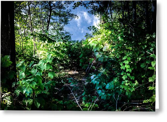 Secret Path Greeting Card by Donna Lee