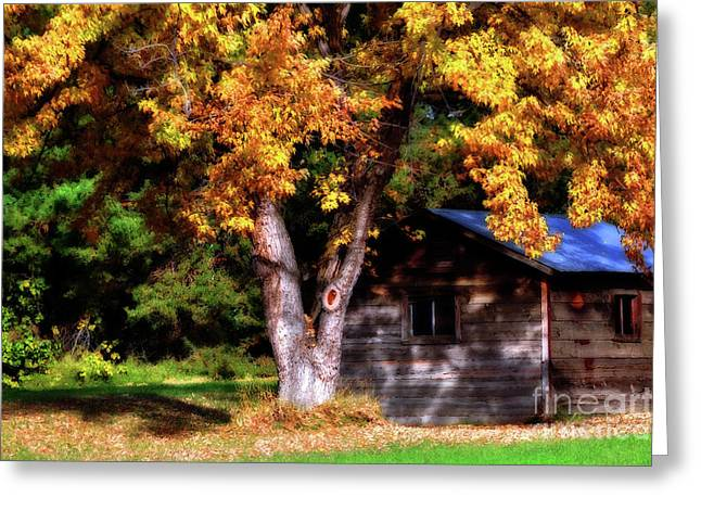 Shack Digital Greeting Cards - Secret Place Greeting Card by Molly McPherson