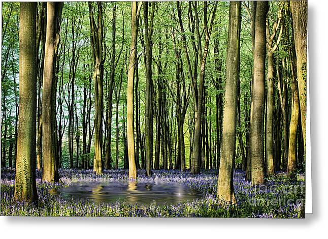 Light Shaft Greeting Cards - Secret pond in bluebell woods Greeting Card by Simon Bratt Photography LRPS