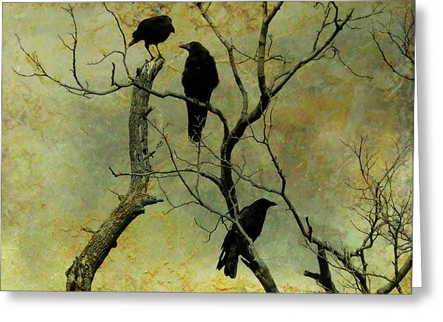 Bird In Tree Greeting Cards - Secretive Crows Greeting Card by Gothicolors Donna Snyder