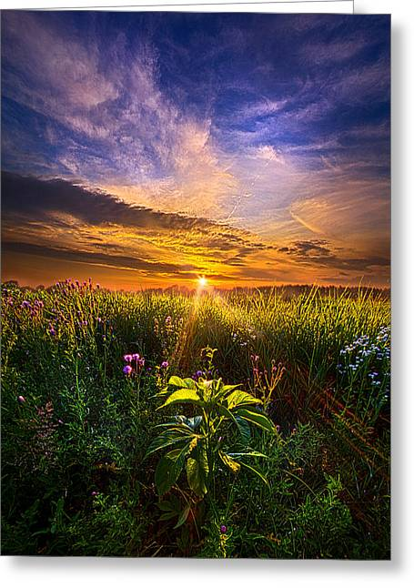Yellow Wild Flowers Greeting Cards - Secrets Revealed Greeting Card by Phil Koch