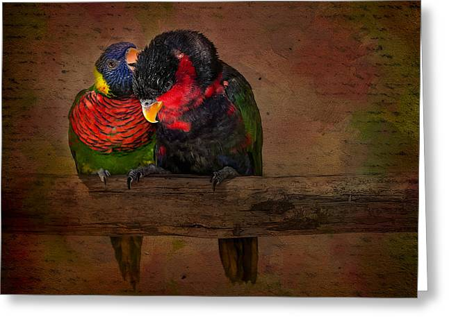 Parrot Digital Art Greeting Cards - Secrets Greeting Card by Susan Candelario