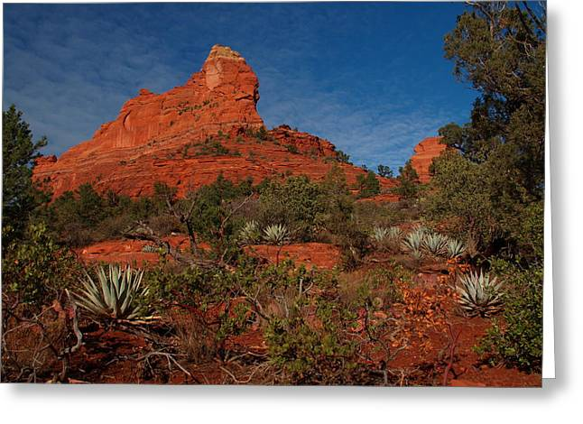 Peterson Nature Photography Greeting Cards - Sedona Greeting Card by James Peterson