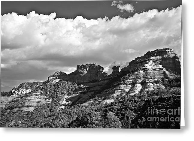 Fineartphotography Greeting Cards - Sedona Spring Welcome in Black and White Greeting Card by Lee Craig
